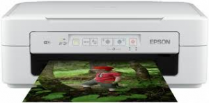 Epson_Expression_Home_XP-257